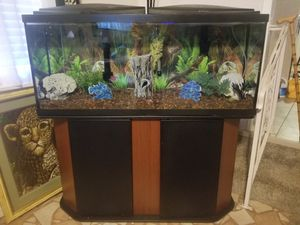 55 gallon fish tank, everything included for Sale in Oklahoma City, OK