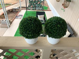 Topiary for Sale in Phoenix, AZ