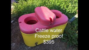 Cattle water frost free for Sale in Elmira, NY