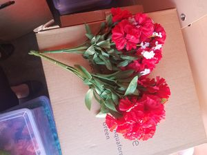 Carnation silk bush for Sale in Riverside, CA