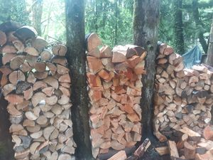 Ready to burn dry fire wood for Sale in Index, WA