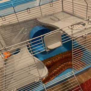 10 gallon tank and all living things small hamster Cage With Supplies for Sale in Huntington Station, NY