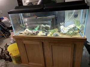 50 GallonTank comes with everything in pictures except the fish not included. Filter,pump,heater.light cover, stand and all decorations, gravel. No c for Sale in Lake Elsinore, CA