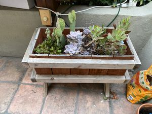 Succulent Planters (with plants!) for Sale in West Hollywood, CA