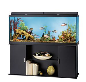 120g Fish Tank & ALL Accessories (Complete Set Up!) for Sale in Renton, WA