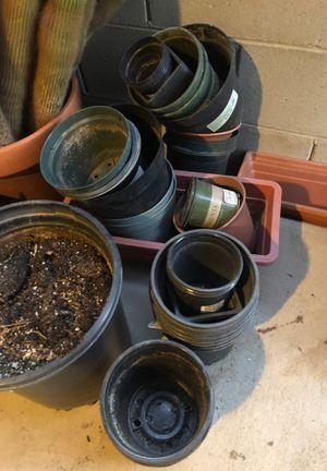 Plant pots for Sale in Phoenix, AZ