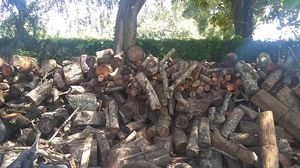 Free Aged Oak BBQ and Firewood for Sale in Tampa, FL
