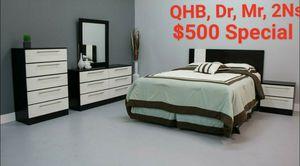 QHb, Dr, Mr, 2 Ns for Sale in Orlando, FL