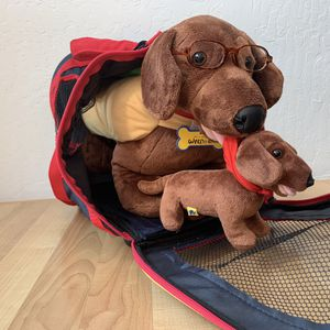 """Used, Build A Bear Workshop Brown Dachshund Wiener Dog Plush Toy Wearing Hot Dog Costume, Collar and Glasses With 9"""" Puppy That Attaches By Magnet And His for Sale for sale  Elizabethtown, PA"""