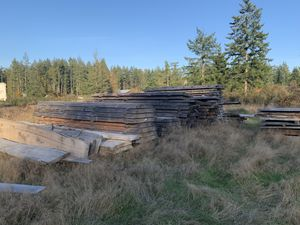 Maple, Hemlock and Fir Slabs for Sale in Graham, WA