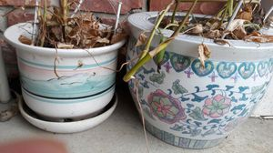 Indoor plant pot for Sale in Southfield, MI
