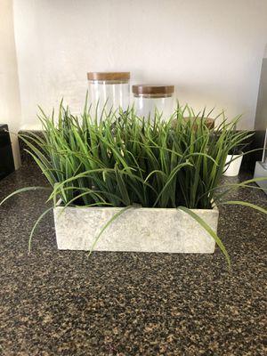 Fake plant for Sale in Alexandria, VA