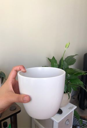 🤍 High Quality Indoor Plant Pot 🤍 for Sale in Los Angeles, CA