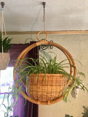 Hanging Bentwood Bamboo Wicker Rattan Plant Basket Boho Chic Hanging Planter Large Hanging Plant Basket Brand New Never Used - Pick Up LA or OC for Sale in Los Angeles, CA