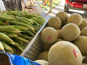 Fresh melons and corn for sale ) melones y elotes de venta for Sale in Hayward, CA