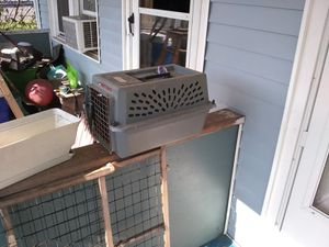 Pet carrier for Sale in South Williamsport, PA