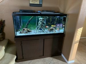 75 Gallon Tank with stand for Sale in ARROWHED FARM, CA