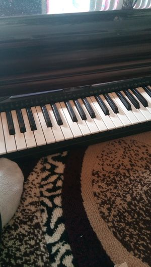 Casio keyboard musical instrument for Sale in San Jose, CA