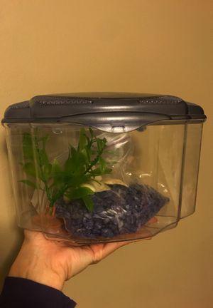 Fish tank small for Sale in Staunton, VA