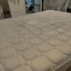 Free Queen Bed Super Comfy Sorry For The Stains My Toddlers Tippy Cups Leak There Is Absolutely No Human/Pet Liquids On This Bed for Sale in Salem, OR