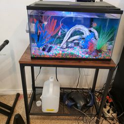Ten Gallon Fish Tank With glow Fish for Sale in Rowland Heights,  CA