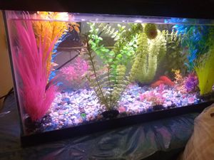 10 Gallon Aquarium Fish Tank/Pezera De 10 Galones for Sale in Woodbridge, VA
