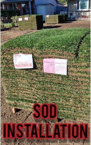 SOD INSTLLATI0N AND SPRINKLERS for Sale in Pico Rivera, CA