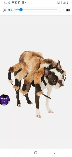 Spider dog costume from Rubies for Sale in Fort Lauderdale, FL