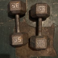 35ilbs Dumbbells for Sale in American Canyon,  CA