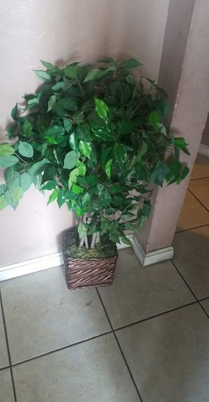 Fake house plants for Sale in San Bernardino, CA
