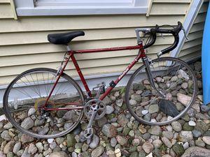 Raleigh international Bike for Sale in Harbor Springs, MI