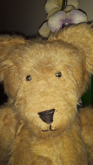 Vintage Artisan Teddy for Sale in VLG WELLINGTN, FL