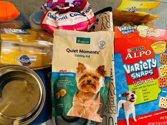 Dog Supplies for Sale in Tampa,  FL