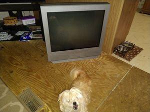 Sanyo tv for Sale in Muncy, PA