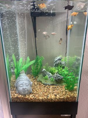 15gallon Fish tank for Sale in San Diego, CA