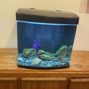 15g Fish Tank for Sale in Tigard, OR