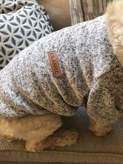 Doggy Sweater For Bang bang for Sale in Henderson,  NV