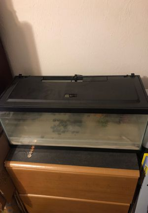 20 gallon fish tank for Sale in Winter Haven, FL