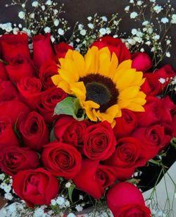 Hermosas Combinaciones De Rosas Desde $35 ☎️📲 Llámanos Y As Tu Orden 💕💓❣️♥️♥️💐🌻🌷🔥 for Sale in Houston,  TX