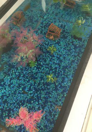 10 gallon Fish Aquarium and filter for Sale in Manassas, VA
