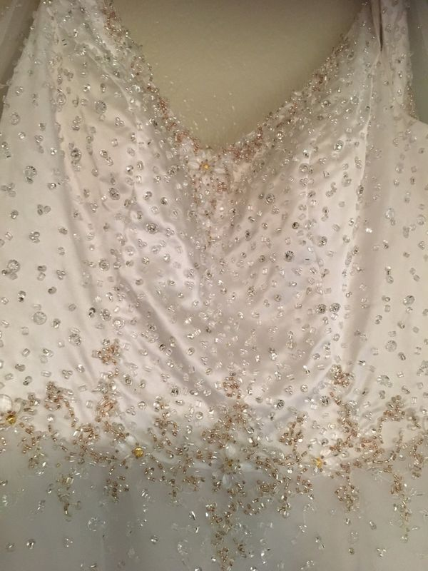 Disney Fairy Tale Elsa dress.