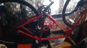 Fuji. road bike. Great condition for Sale in Denver, CO