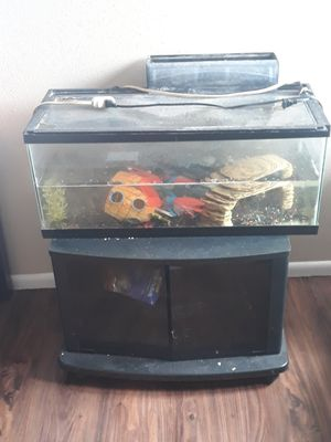Tank, stand, & turtle for Sale in Murray, UT