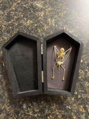 Bat Skeleton in painted Coffin for Sale in Mauldin, SC