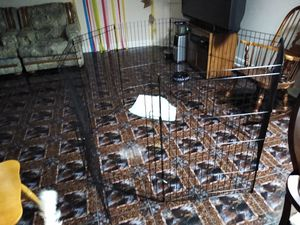Dog play pen for Sale in Elk Grove Village, IL