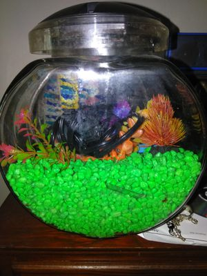 Fish bowl with extras,5 gal.tank w/ extra for Sale in Kingsport, TN