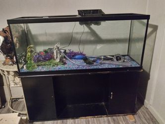 250 gallons fish tank for Sale in Oklahoma City,  OK
