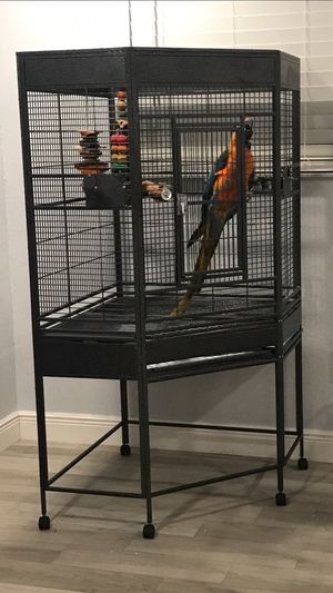 Large parrot cage. Like new and kept indoors. Bird not for sale. Only cage and bowls. for Sale in Miami, FL