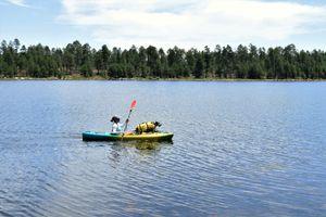 Perception Swifty Kayak w/ Paddle for Sale in Scottsdale, AZ
