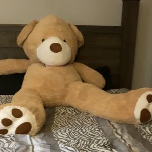 "GIANT BEAR FOR SALE $100 ""BENJIE"" for Sale in Wyncote, PA"